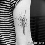 Фото тату линии от 17.09.2018 №219 - line tattoos - tatufoto.com