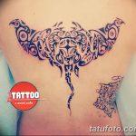 Фото тату полинезия от 24.09.2018 №161 - Polynesia tattoo - tatufoto.com