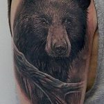 Фото тату с медведем от 12.09.2018 №156 - tattoo with a bear - tatufoto.com