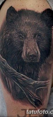 Фото тату с медведем от 12.09.2018 №156 – tattoo with a bear – tatufoto.com