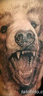Фото тату с медведем от 12.09.2018 №169 – tattoo with a bear – tatufoto.com