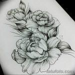 Фото эскизы тату камелия от 18.09.2018 №004 - sketches of camellia tattoos - tatufoto.com