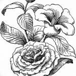 Фото эскизы тату камелия от 18.09.2018 №006 - sketches of camellia tattoos - tatufoto.com