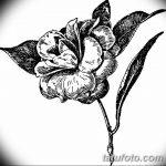 Фото эскизы тату камелия от 18.09.2018 №007 - sketches of camellia tattoos - tatufoto.com
