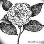 Фото эскизы тату камелия от 18.09.2018 №008 - sketches of camellia tattoos - tatufoto.com