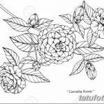 Фото эскизы тату камелия от 18.09.2018 №012 - sketches of camellia tattoos - tatufoto.com