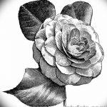 Фото эскизы тату камелия от 18.09.2018 №013 - sketches of camellia tattoos - tatufoto.com