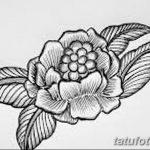 Фото эскизы тату камелия от 18.09.2018 №019 - sketches of camellia tattoos - tatufoto.com