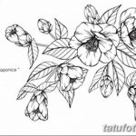 Фото эскизы тату камелия от 18.09.2018 №027 - sketches of camellia tattoos - tatufoto.com