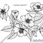 Фото эскизы тату камелия от 18.09.2018 №028 - sketches of camellia tattoos - tatufoto.com