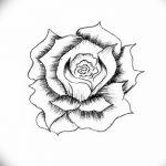 Фото эскизы тату камелия от 18.09.2018 №032 - sketches of camellia tattoos - tatufoto.com