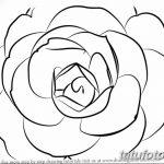 Фото эскизы тату камелия от 18.09.2018 №034 - sketches of camellia tattoos - tatufoto.com