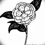 Фото эскизы тату камелия от 18.09.2018 №043 - sketches of camellia tattoos - tatufoto.com