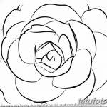 Фото эскизы тату камелия от 18.09.2018 №046 - sketches of camellia tattoos - tatufoto.com