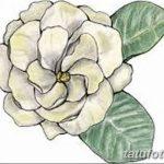 Фото эскизы тату камелия от 18.09.2018 №055 - sketches of camellia tattoos - tatufoto.com