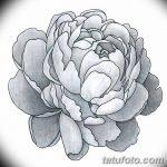 Фото эскизы тату камелия от 18.09.2018 №056 - sketches of camellia tattoos - tatufoto.com