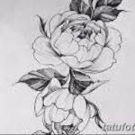 Фото эскизы тату камелия от 18.09.2018 №058 - sketches of camellia tattoos - tatufoto.com