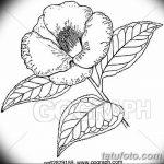 Фото эскизы тату камелия от 18.09.2018 №062 - sketches of camellia tattoos - tatufoto.com