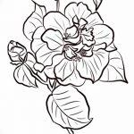Фото эскизы тату камелия от 18.09.2018 №066 - sketches of camellia tattoos - tatufoto.com