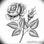 Фото эскизы тату камелия от 18.09.2018 №067 - sketches of camellia tattoos - tatufoto.com