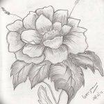 Фото эскизы тату камелия от 18.09.2018 №073 - sketches of camellia tattoos - tatufoto.com