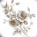 Фото эскизы тату камелия от 18.09.2018 №076 - sketches of camellia tattoos - tatufoto.com