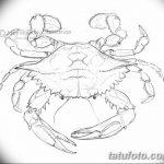 Фото эскизы тату краб рак от 11.09.2018 №004 - sketching tattoo crab cancer - tatufoto.com