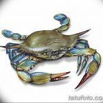 Фото эскизы тату краб рак от 11.09.2018 №008 - sketching tattoo crab cancer - tatufoto.com