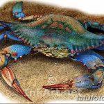 Фото эскизы тату краб рак от 11.09.2018 №012 - sketching tattoo crab cancer - tatufoto.com