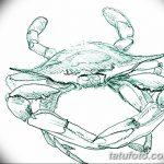 Фото эскизы тату краб рак от 11.09.2018 №013 - sketching tattoo crab cancer - tatufoto.com