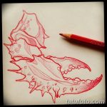 Фото эскизы тату краб рак от 11.09.2018 №043 - sketching tattoo crab cancer - tatufoto.com