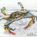 Фото эскизы тату краб рак от 11.09.2018 №054 - sketching tattoo crab cancer - tatufoto.com