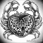 Фото эскизы тату краб рак от 11.09.2018 №059 - sketching tattoo crab cancer - tatufoto.com