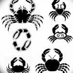 Фото эскизы тату краб рак от 11.09.2018 №063 - sketching tattoo crab cancer - tatufoto.com
