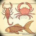 Фото эскизы тату краб рак от 11.09.2018 №067 - sketching tattoo crab cancer - tatufoto.com
