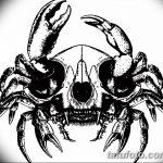 Фото эскизы тату краб рак от 11.09.2018 №077 - sketching tattoo crab cancer - tatufoto.com
