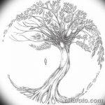 Фото эскизы тату круг от 17.09.2018 №019 - sketching circle tattoo - tatufoto.com
