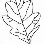 Фото эскиз тату лист дуба от 11.09.2018 №005 - sketch of tattoo oak leaf - tatufoto.com