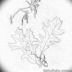 Фото эскиз тату лист дуба от 11.09.2018 №010 - sketch of tattoo oak leaf - tatufoto.com