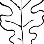 Фото эскиз тату лист дуба от 11.09.2018 №011 - sketch of tattoo oak leaf - tatufoto.com