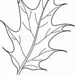 Фото эскиз тату лист дуба от 11.09.2018 №013 - sketch of tattoo oak leaf - tatufoto.com