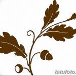 Фото эскиз тату лист дуба от 11.09.2018 №021 - sketch of tattoo oak leaf - tatufoto.com
