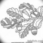 Фото эскиз тату лист дуба от 11.09.2018 №023 - sketch of tattoo oak leaf - tatufoto.com