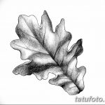 Фото эскиз тату лист дуба от 11.09.2018 №024 - sketch of tattoo oak leaf - tatufoto.com