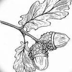 Фото эскиз тату лист дуба от 11.09.2018 №025 - sketch of tattoo oak leaf - tatufoto.com