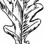 Фото эскиз тату лист дуба от 11.09.2018 №028 - sketch of tattoo oak leaf - tatufoto.com