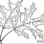 Фото эскиз тату лист дуба от 11.09.2018 №034 - sketch of tattoo oak leaf - tatufoto.com