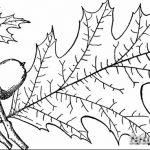 Фото эскиз тату лист дуба от 11.09.2018 №037 - sketch of tattoo oak leaf - tatufoto.com