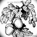 Фото эскиз тату лист дуба от 11.09.2018 №039 - sketch of tattoo oak leaf - tatufoto.com