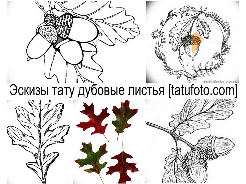 Эскизы тату дубовые листья - галерея оригинальных рисунков для татуировки